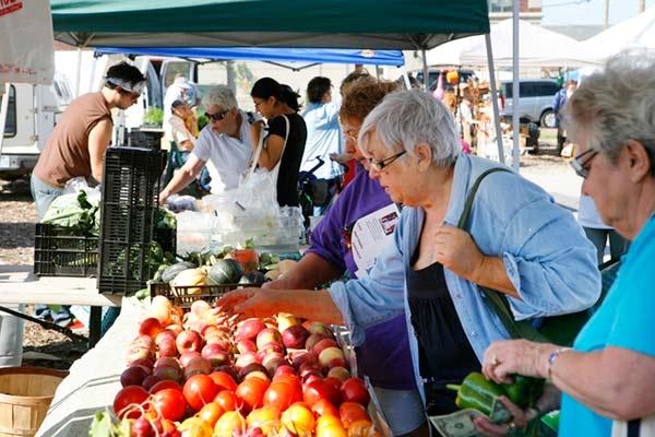 farmers' market Travel