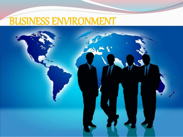 Business Environment11
